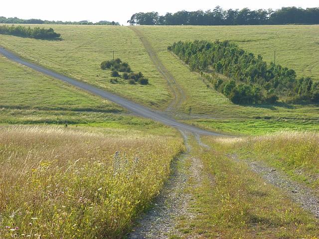 Tracks on Copehill Down