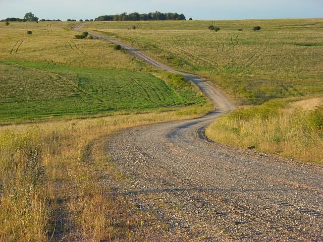 Track on downland, Chitterne