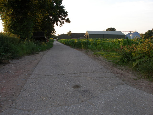 The road to Charity Farm