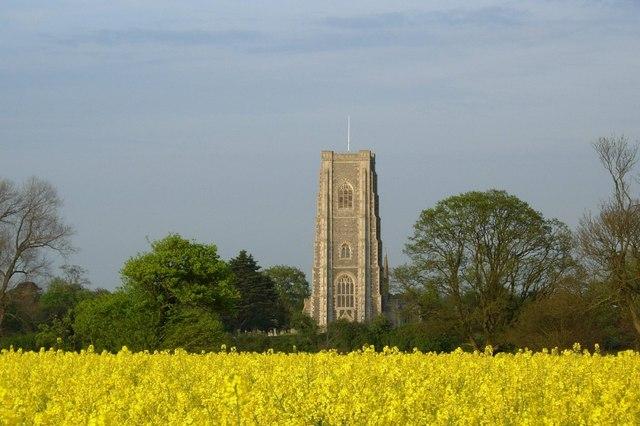Across the rape field to Lavenham Church