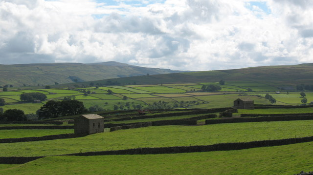 Walls and pastures above Carperby