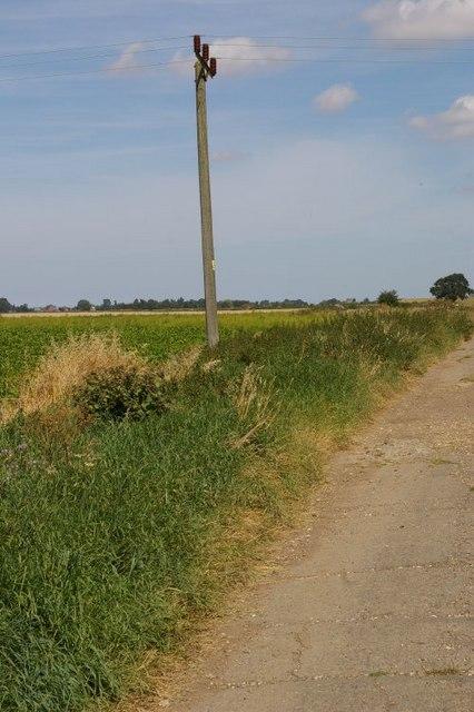 Telegraph pole in field
