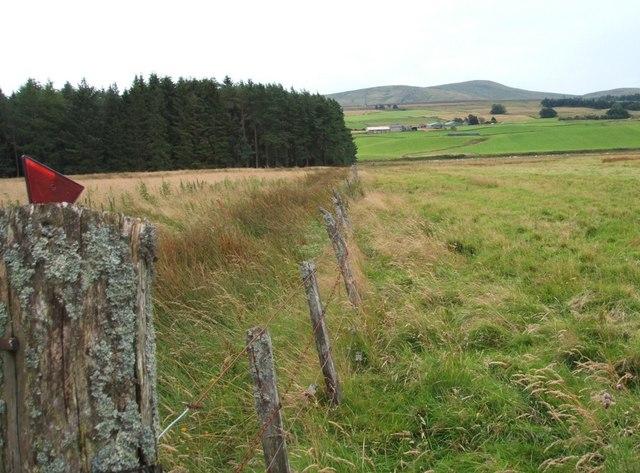 Field Boundary Fence