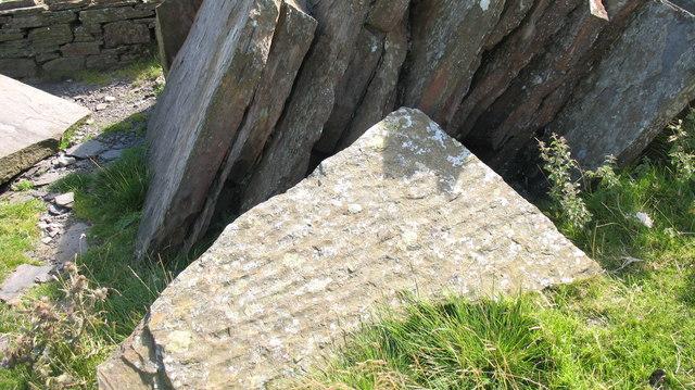 Fossil ripple marks in sandstone.