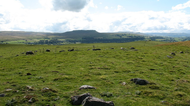 Stone Circle near Carperby