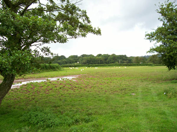 Carreg Sawdde Common