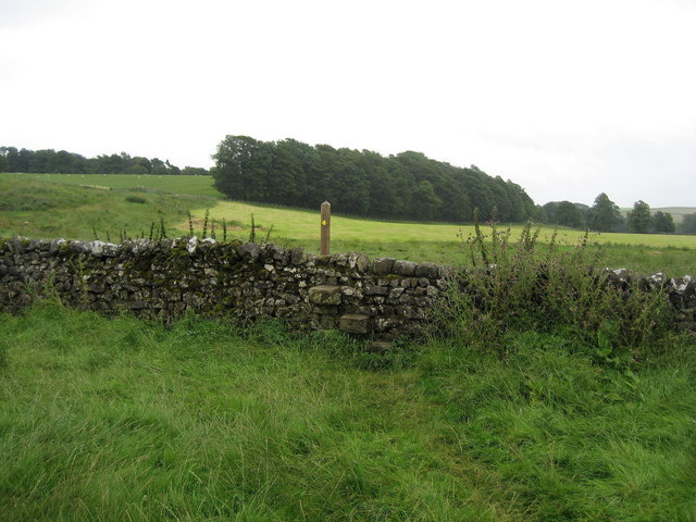Pennine Way at Newfield