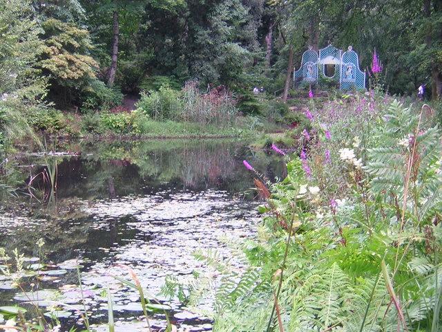 Portmeirion Gardens Pond