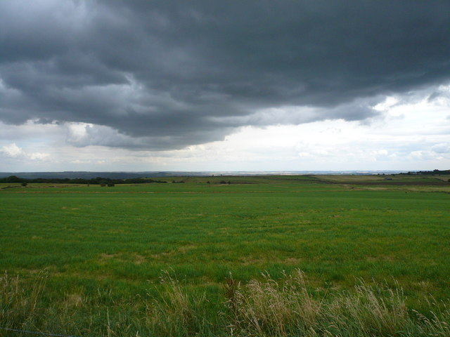 Open Farmland - Viewed from Fox Lane