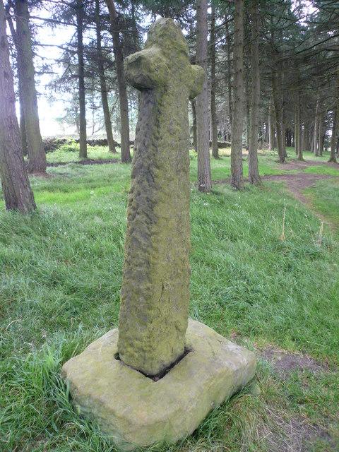 Stone Cross in Shillito Wood