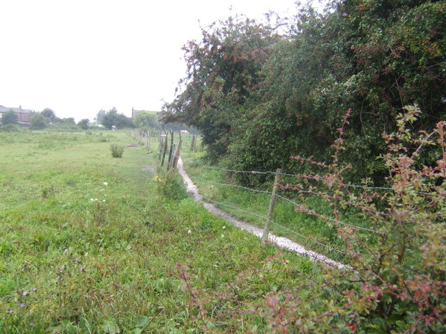 Footpath and paddocks in Hermitage
