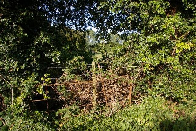 Unprepossessing fence