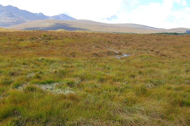 Moorland north of Sligachan