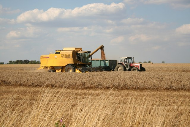 Bardney harvest