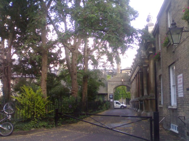 View from Little St Mary's Lane towards Peterhouse