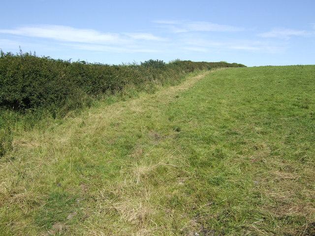 Pasture land south of Redberth