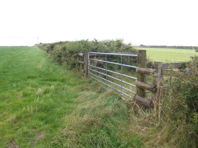 Grazing land near Newton Cross