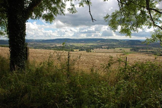 Conderton Hill