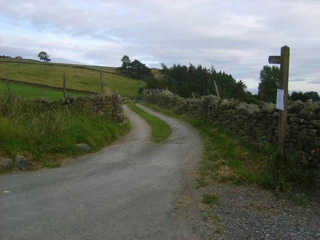 Teesdale Way