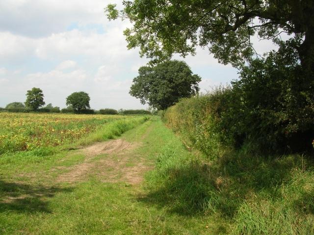 Footpath to Myton