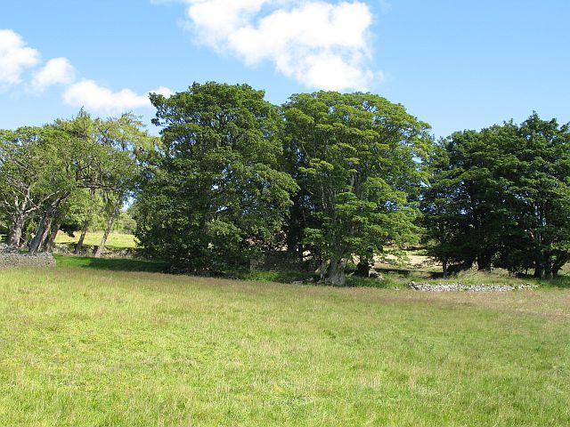 Ruin on Black Hill