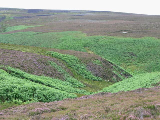 The valley of Sladeyford Sike