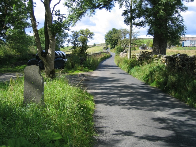 The Lane to High Birkwith