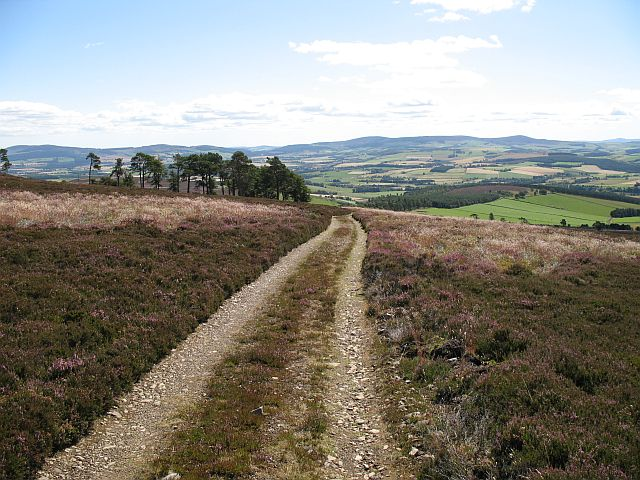 Track on Black Hill