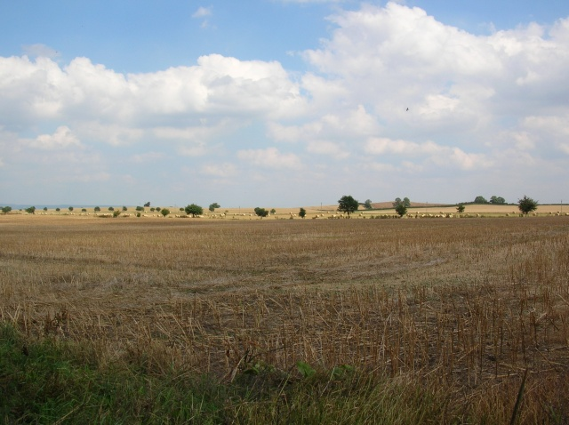 Across Myton Moor