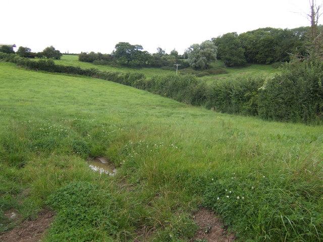 The Polden Hills