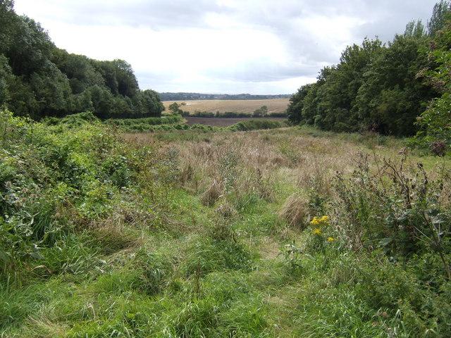 View down Windmill Hill