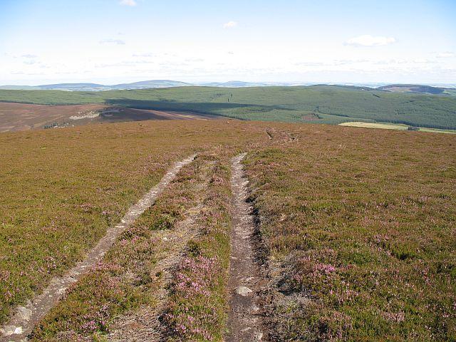 Thin soils on Lord Arthur's Hill