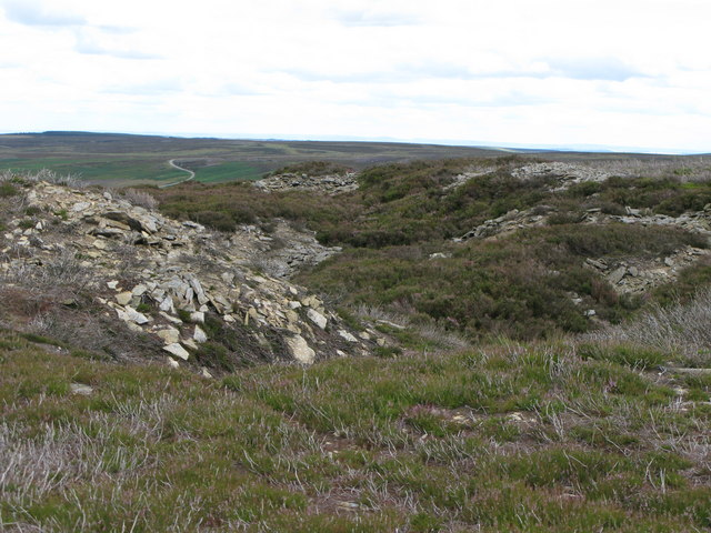 Disused quarry on Hisehope Flat