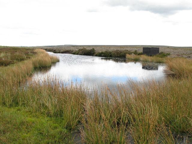 The western Fir Pool (2)