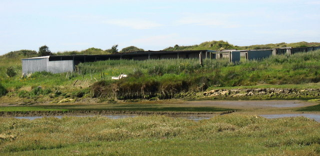 Sheep sheds on the opposite bank of the Braint