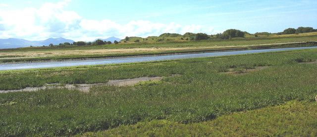 Sand dunes at Tywyn Niwbwrch