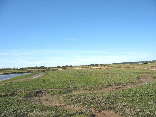 Marsh creeks