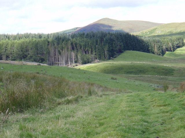 Track from Achany Farm to Braemore Farm