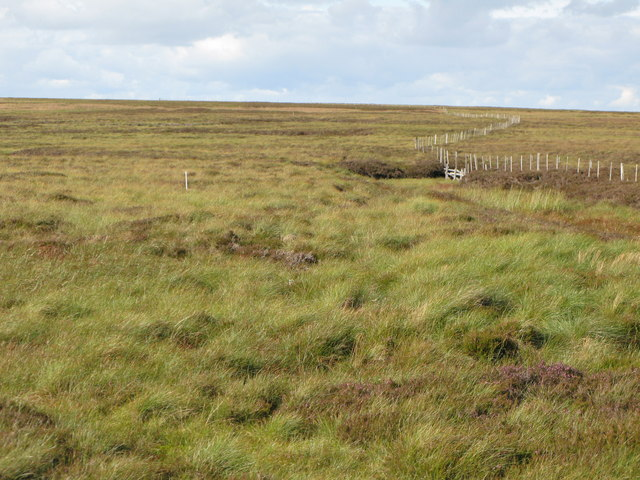 The Northumberland/Durham boundary fence near Shorngate Cross