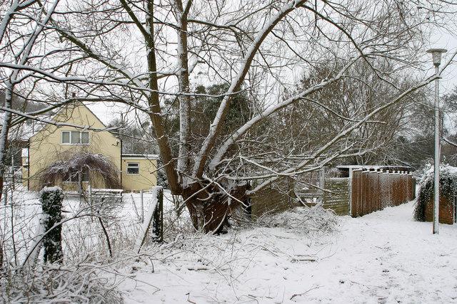 Snow Scene, Watermead, Brockworth