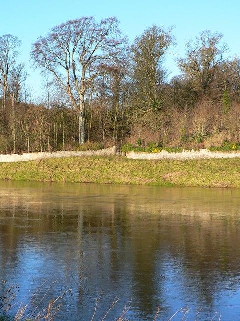 Scottish side of River Tweed