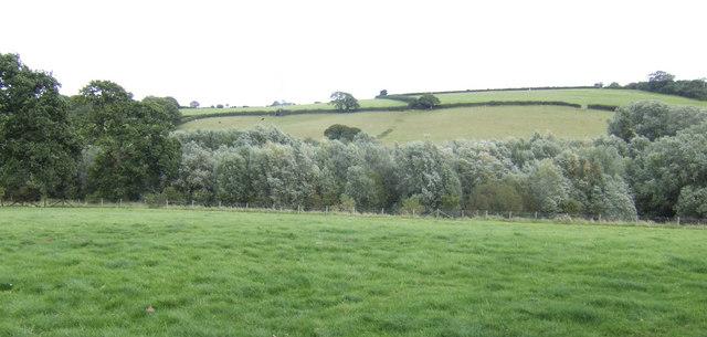 Across the county boundary