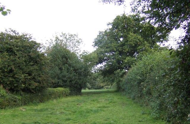 Bridleway east to Marvel Farm