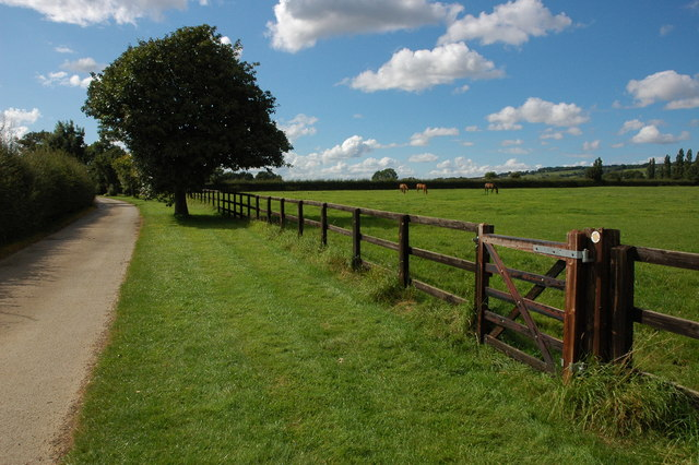 Driveway to Overbury Stables
