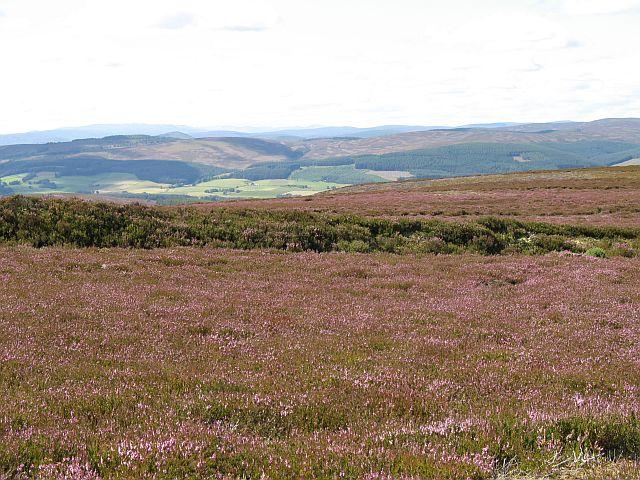 Dyke, Lord Arthur's Hill