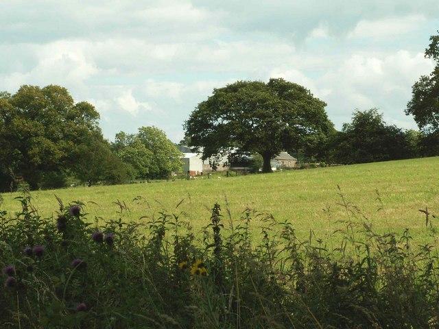 New Dorryfield, viewed across field