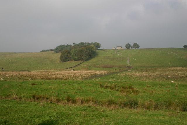 Cockmount Hill Farm on Roman Wall