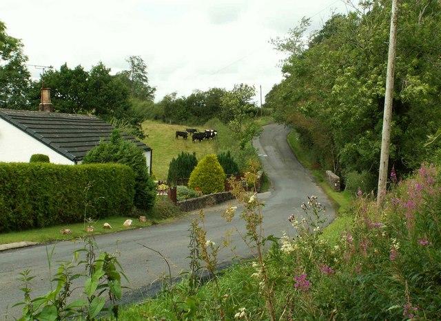 Kayshouseburn - Cottage and bridge