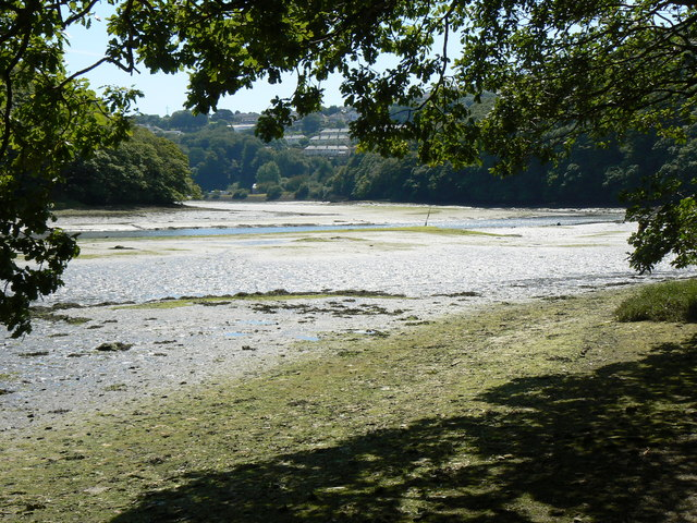 West Looe River at Low Tide