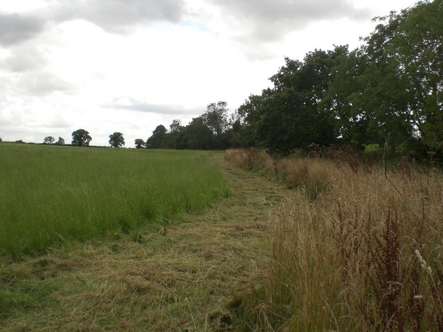 Meadowland south west of Great Ryburgh